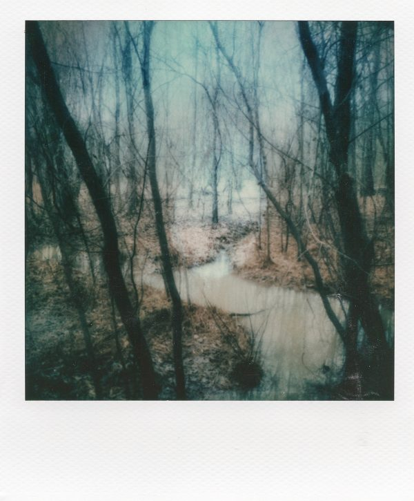 """Reality,"" a professional artistic polaroid print by Scott Asano."