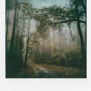 """Divine Things,"" a professional artistic polaroid print by Scott Asano Photography."