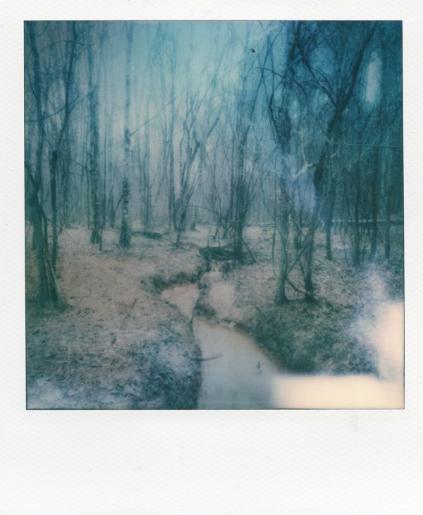 """Ordered,"" an artistic polaroid print on archival matte paper by Scott Asano Photography."